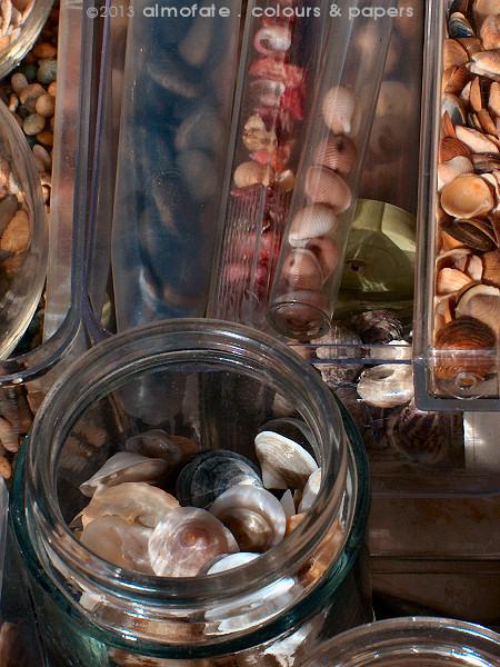 @ Almofate - Pebbles and Seashells _ Seixos e Conchas