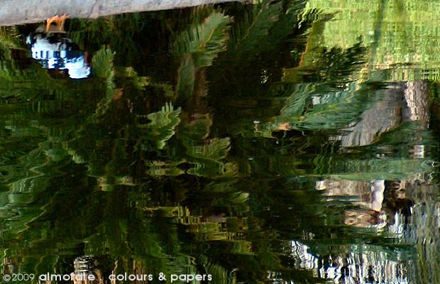 @ Almofate - Green Reflections on Water _ Lisboa _ Reflexos Verdes na Água