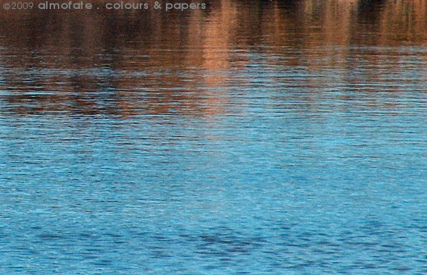 @ Almofate - Salt marshes at high tide _ Castro Marim _ Sapal na maré alta