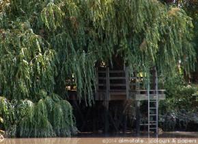 @ Almofate - Sorraia River, shelter _ Rio Sorraia, abrigo
