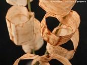 @ Almofate – Used tea bags arrangement, detail _ Arranjo com saquetas de chá usadas, pormenor